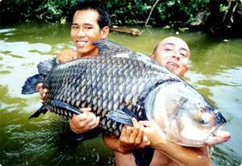 Eron de Almeida e seu alien de 29 kg