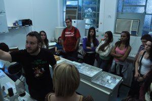Visita ao laboratório de sistemática de Vespas
