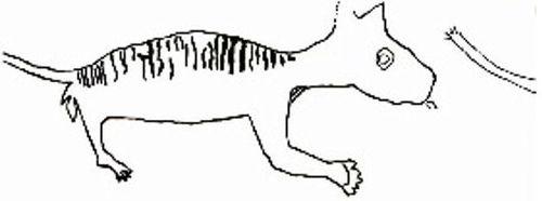 thylacoleoutline.jpg