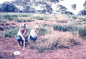 Como consultora na Colombia em 1988