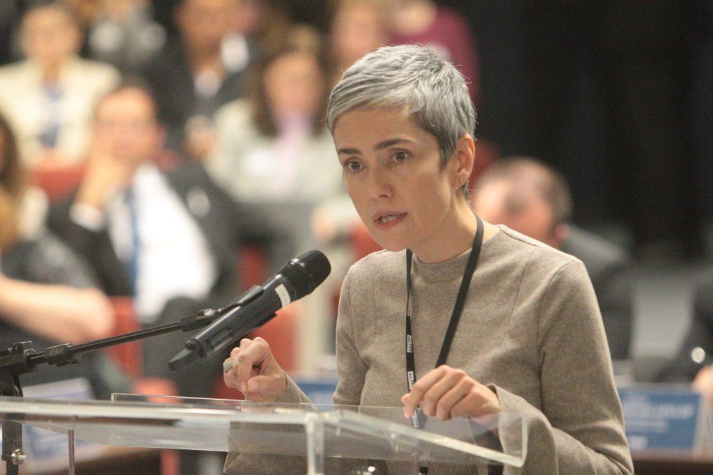 Debora Diniz em audiência pública no STF em 03/08/2018.