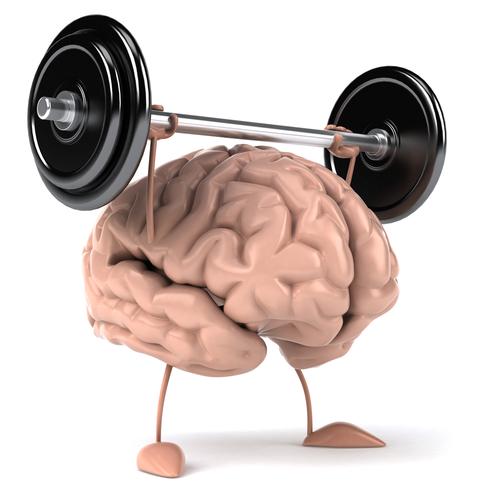 brain_muscle