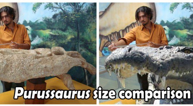 O Rei da Amazônia: o Super Croc da selva