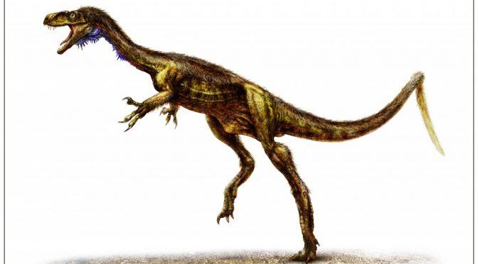 >Eodromaeus, um novo dino basal da Argentina e Eoraptor, um Sauropodomorpha