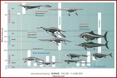 >Uma introdução à respeito dos Monstros Marinhos do Cretáceo