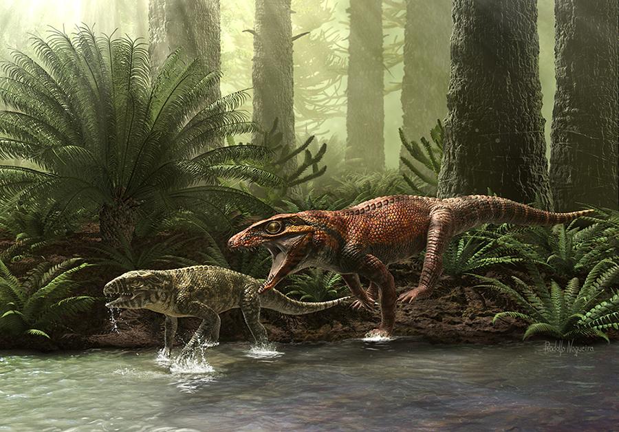 Gondwanasuchus scabrosus_Rodolfo Nogueira