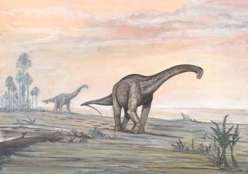 Dinossauro saurópode, linda arte de Bernardo G. Riga