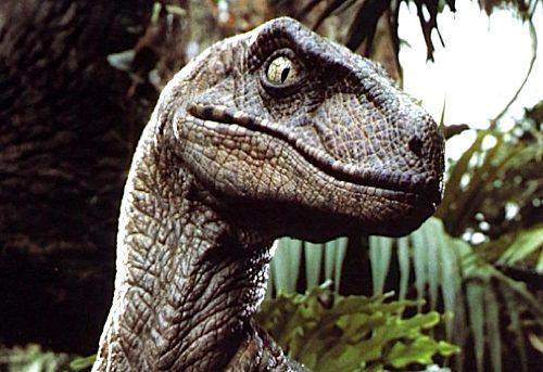 141_velociraptor