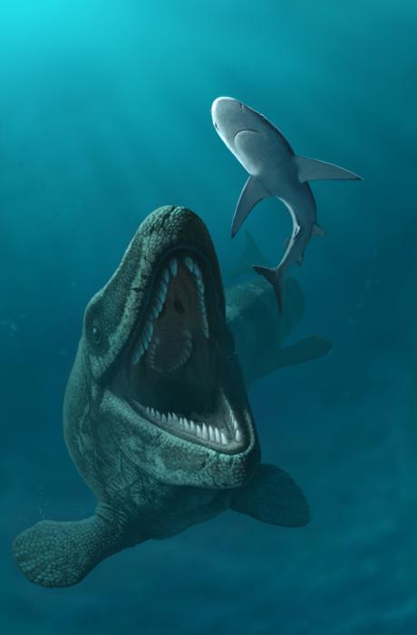 Mosasaurus, por Andrey Atuchin