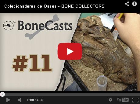 BoneCast #11 – Preparação de Fósseis com Pedro H. Moraes