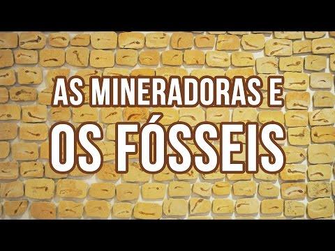 Fósseis e mineradoras