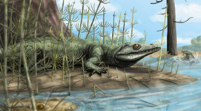 Conheça Teyujagua, uma nova (e estranha!) espécie fóssil da região Sul do Brasil
