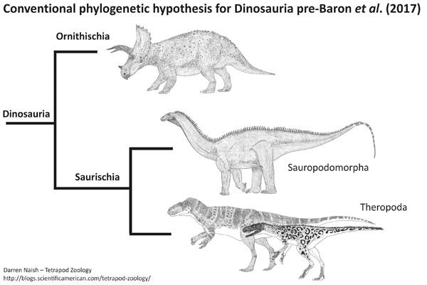 Cladograma de acordo com a filogenia clássica dos dinossauros. Imagem por Darren Naish.