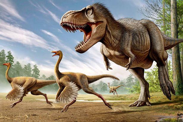 Fanboys, vocês ainda não se livraram do T. rex com penas...
