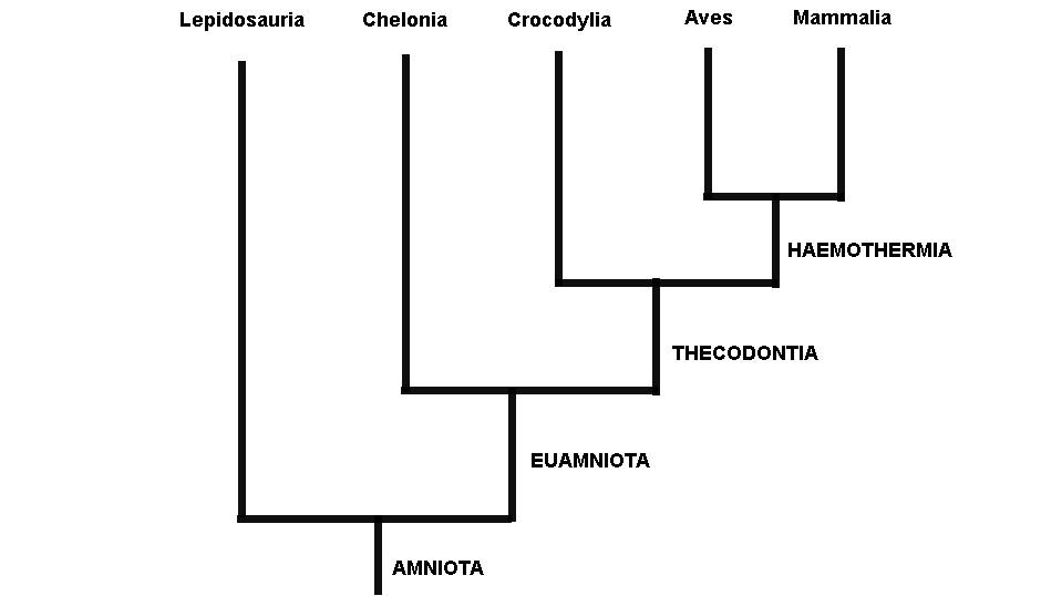 Esta imagem possuí um atributo alt vazio; O nome do arquivo é Fig.1.-Árvore-Gardiner-recent.jpg