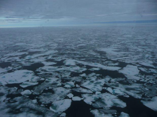 Gelo marinho de primeiro ano derrete no verão entre Svalbard e a Groenlândia em 2011