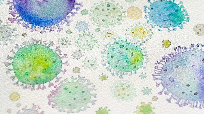 várias bactérias