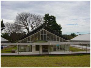 Imagem de uma das casas de vegetação da Estação Quarentenária do Cenargen, no Distrito Federal em 2012.