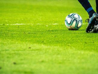 grama para futebol