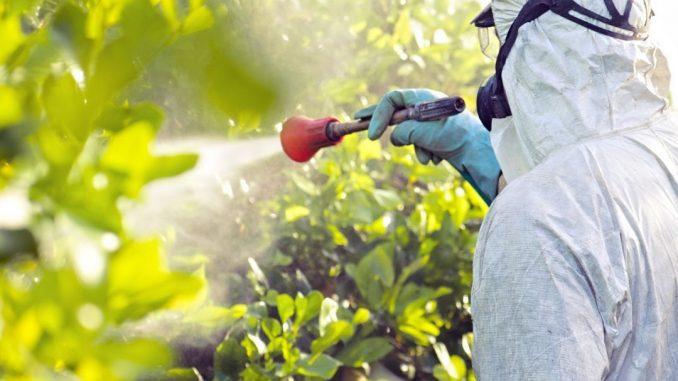 aplicação de agrotoxico