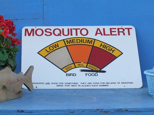 Um mundo sem mosquitos!?
