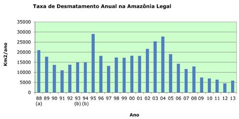 Desmatamento aumenta na floresta Amazônica
