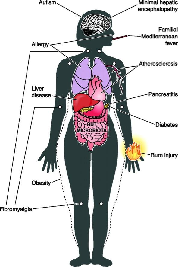 Microbiota2