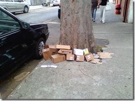 lixo_rua