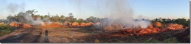 Fornos de carvão em Goianésia - PA(carvao1)