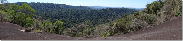 Vista da floresta a partir da canga (floresta1)