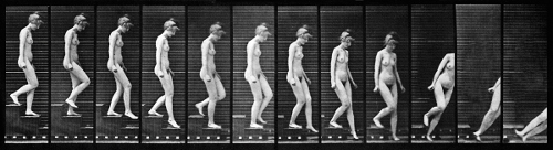 Muybridge--Queda-3-idade.jpg