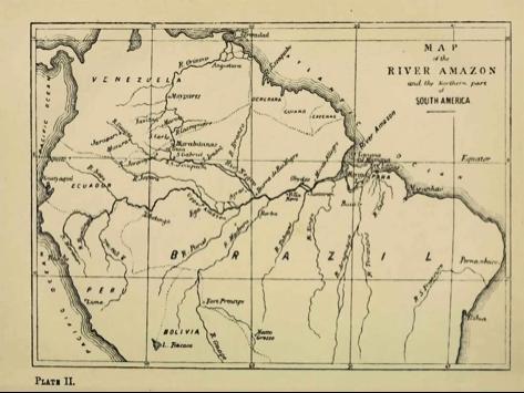 Figura 3. Mapa do Rio Amazonas, realizado por Alfred Russel Wallace durante sua expedição pelo Brasil 1848-1852. Fonte: archive.org