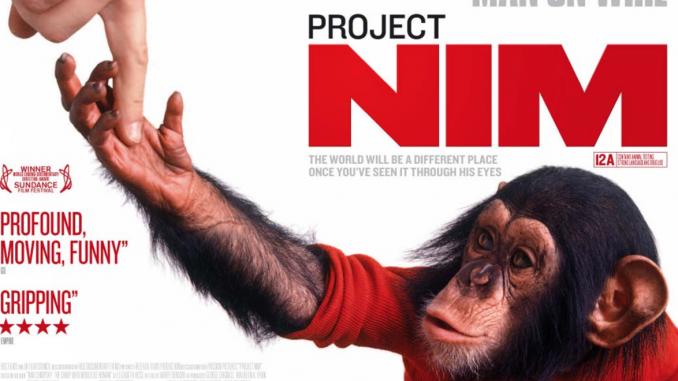 Nim Project Flyer (cartaz do filme Projeto Nim). A imagem mostra Nim Chimpsky interagindo com a mão de um humano #ParaCegoVer