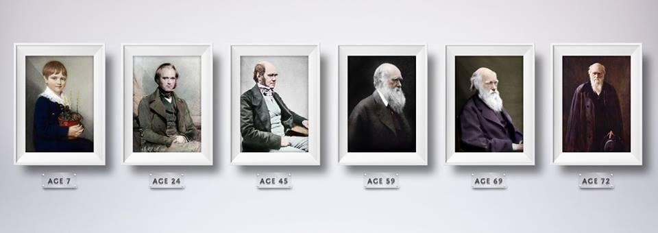 ontogenese de Darwin