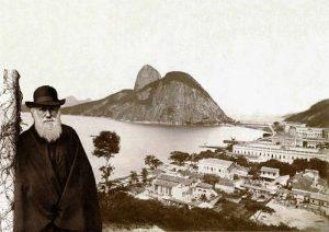 Darwin velho na velha Rio de Janeiro