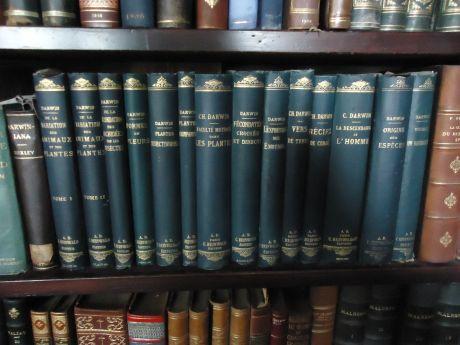 coleção de obras antigas de Darwin