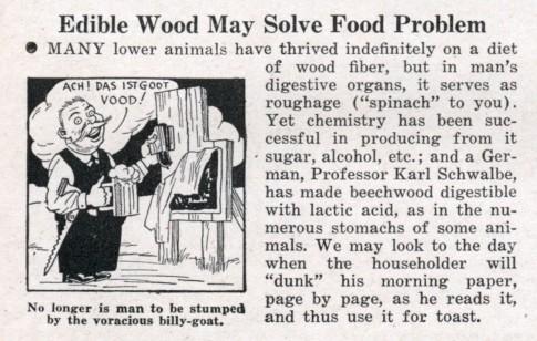 digerir madeira com acido latico