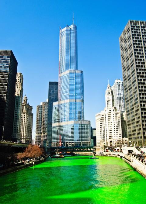 rio verde festa chicago