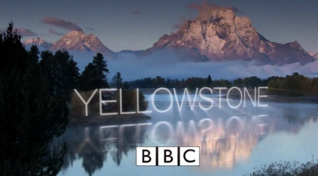 yellowstone logotipo