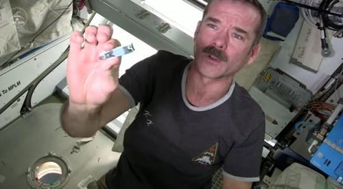 cortador de unhas