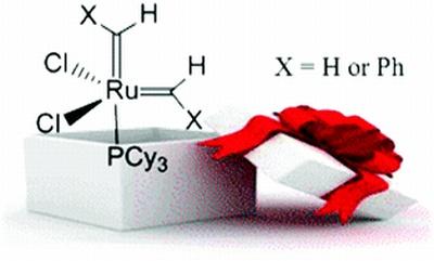 surpresa vc ganhou uma molécula