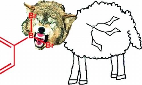 ovelha com cabeça de lobo