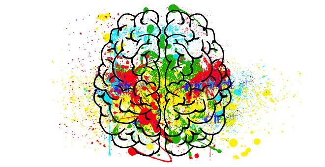 Na imagem, vemos o desenho de um cérebro colorido por diferentes corem em aquarela.