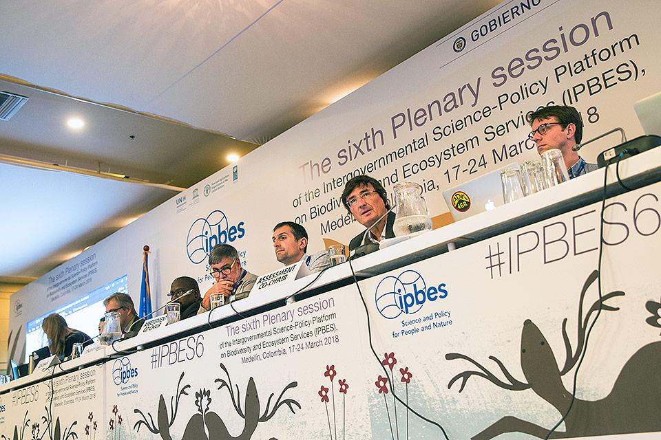 Plenária da IPBES ocorrida na Colômbia: referência na avaliação do declínio da biodiversidade. Foto: Jornal da Unicamp