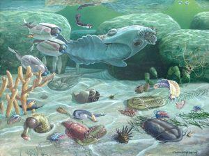 Figura 3: Explosão da vida cambriana. Fonte: Burgess Shale Fauna, de Carel Brest van Kempen, 1989.