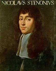 Nicolau Steno
