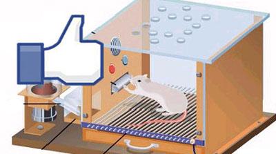 20110616_facebook.jpg