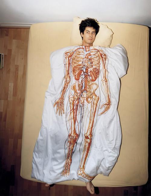 Usando anatomia