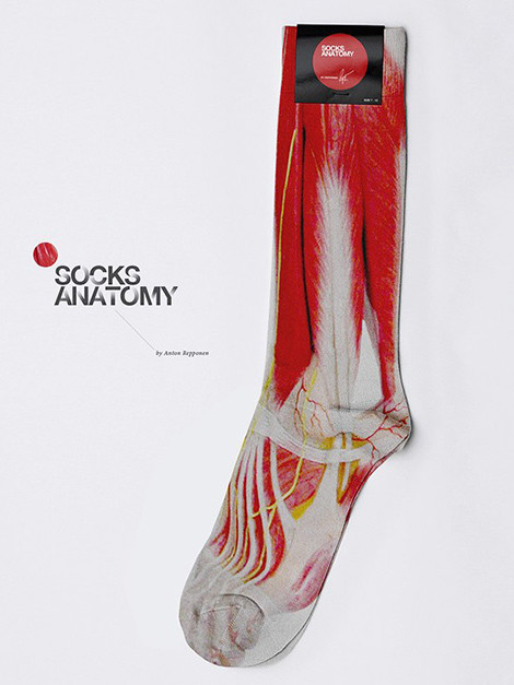 meia_anatomica.jpg