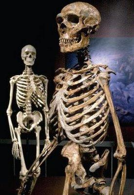 Genoma do Homem de Neandertal. E daí?